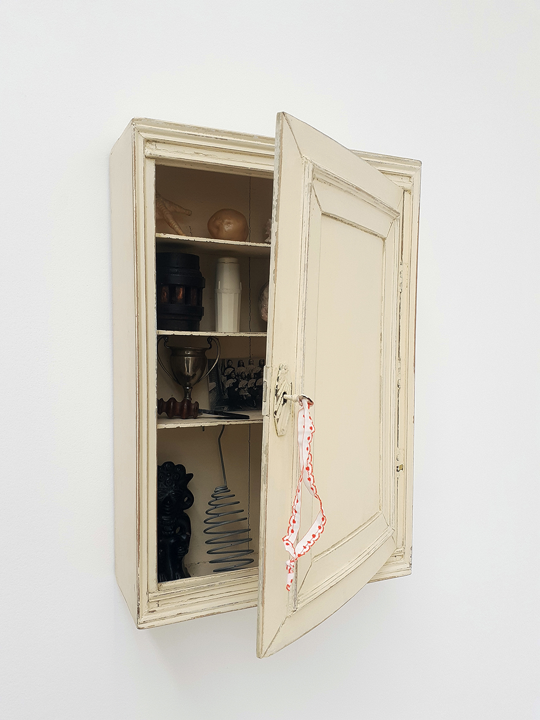 Mark Dion - The Medecine Cabinet of Mystery, 2013-2019